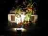 Freddies Statue bei Nacht