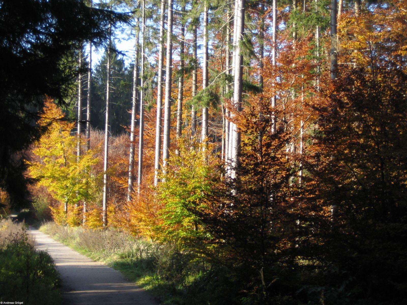 Herbst 2007 3