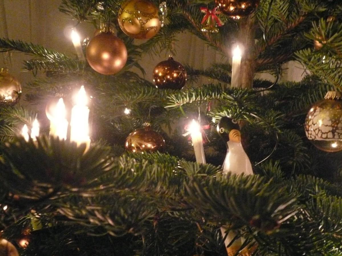 51: Weihnachtszauber