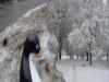 02: Winterwunderland