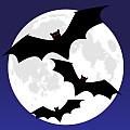 Bats + Moon