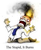 The stupid, it burns!