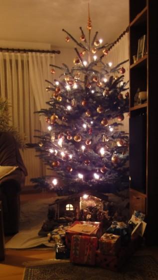 Weihnachtsbaum 2009