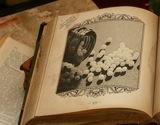 Globuli-Buch
