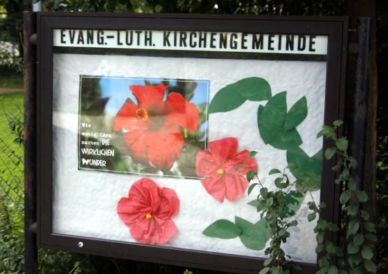 Aushang der evang.-luth. Kirchengemeinde: Wie wenig Lärm machen die wirklichen Wunder; Bild: Blüten