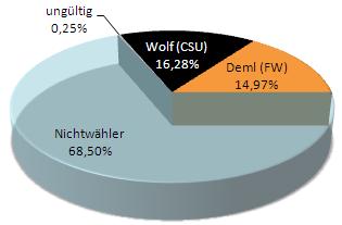 Stichwahl 2011