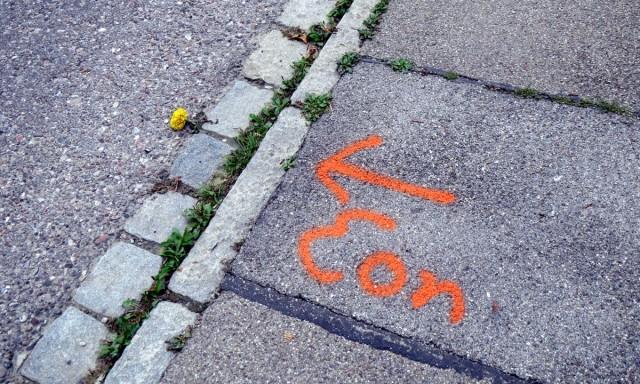 Bodenmarkierung 'Eon' mit Pfeil, der zufälligerweise auf eine Blume in einer Straßenrand-Ritze zeigt