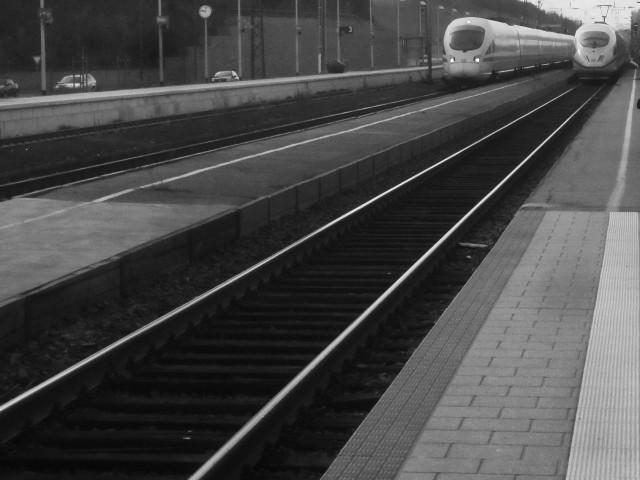 2 ICEs im Bahnhof PAF copy
