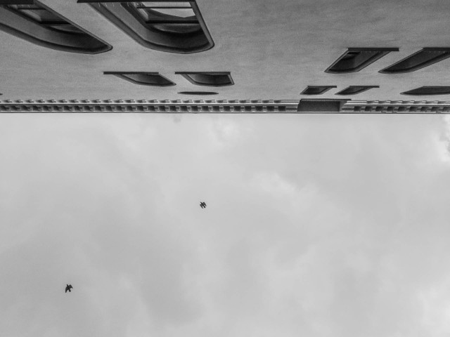 Rathaus nach oben O IMG_5264